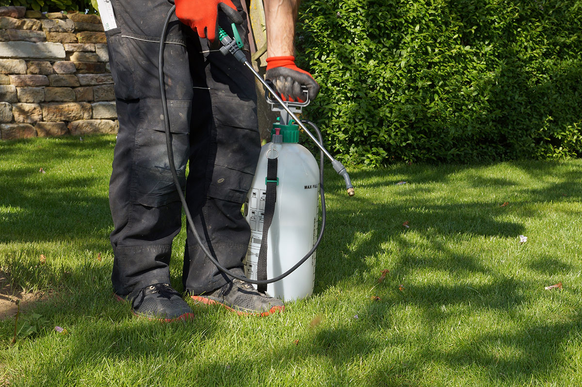 chemical application on lawn